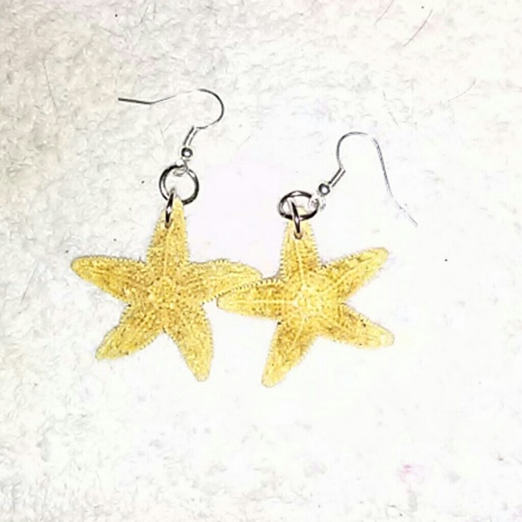 Jewelry - New Real Starfish Earrings⭐